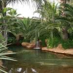 piscina laguna naturale