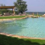 piscina ad effetto naturale con ponte